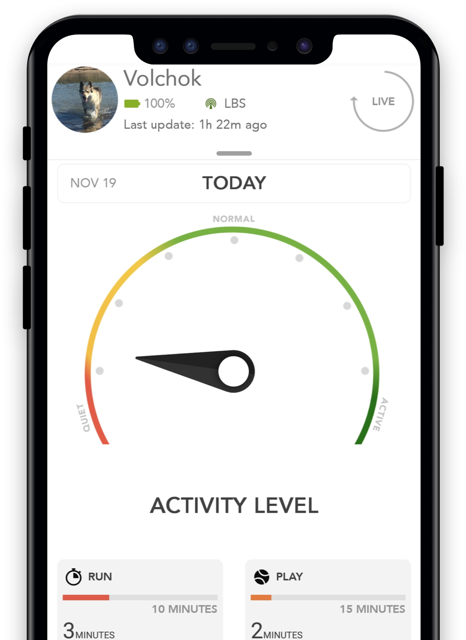 come-funziona-l-activity-tracking