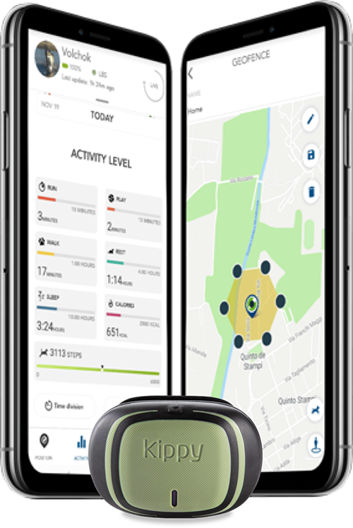 How Activity Tracking works