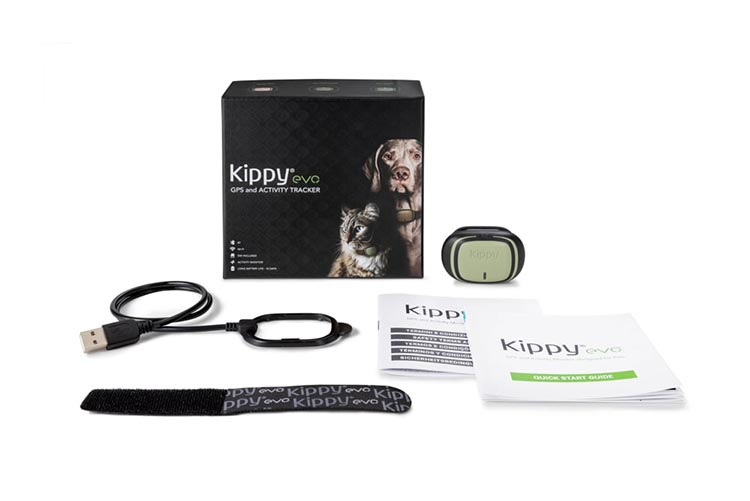 Kippy EVO Green Forest